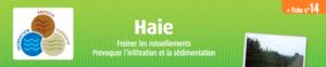 fiche-haie