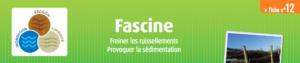 fiche-fascine