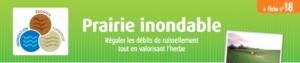 fiche_prairie_inondable